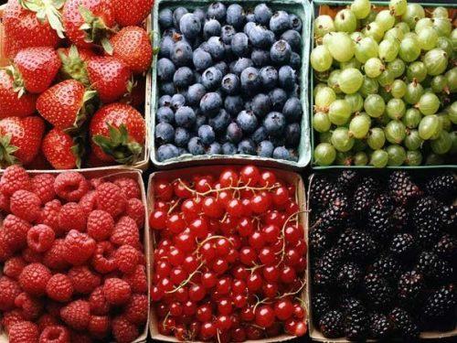 1377276994_sezonnye-recepty-kompoty-iz-fruktov-i-jagod