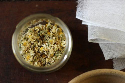 chamomile (1)