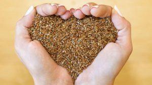 Льняное семя – эффективная помощь при лечении желудка
