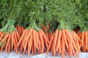 Морковная ботва — то, что кролику вкусно, человеку — полезно
