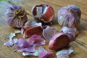Отвар шелухи чеснока — панацея от ста болезней
