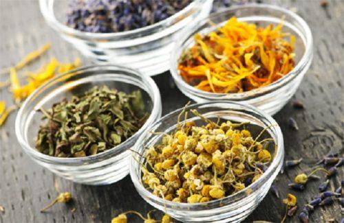 Настой от кашля из лекарственной флоры