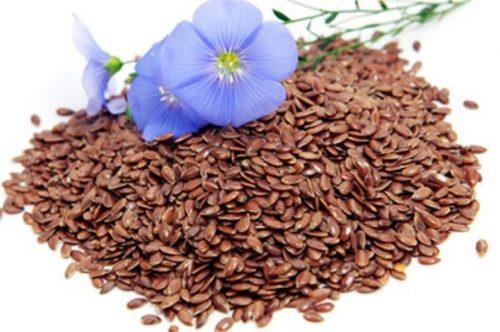 семя льна для желудка
