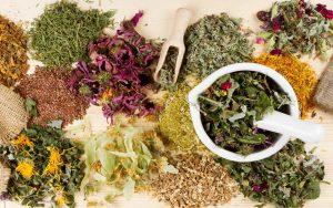 Спасаемся от глистов травяными противопаразитарными сборами
