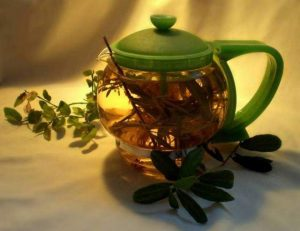 Лечение миомы настоями из трав в домашних условиях