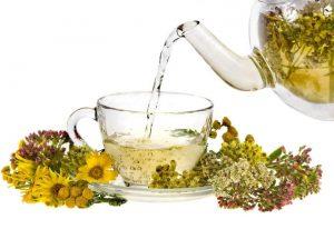 Монастырский чай паразитов изгоняет и жизни годы продлевает